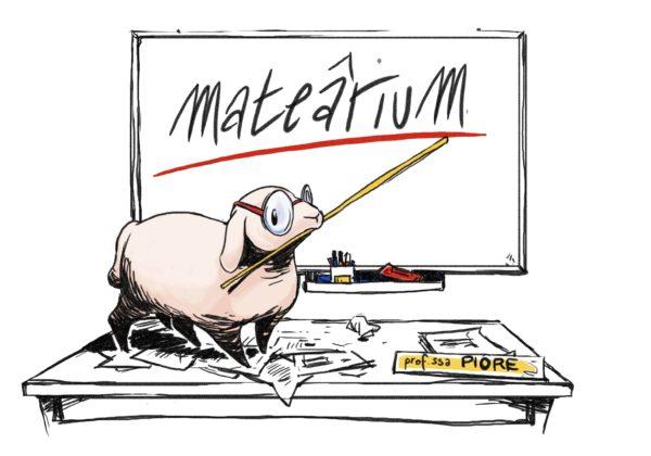 """A una studentessa dello Stellini la prima """"borsa di studio MateâriuM"""""""