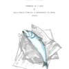 L'Odissea di un pescivendolo | di Alessandro Di Pauli e Dario Paolo D'Antoni