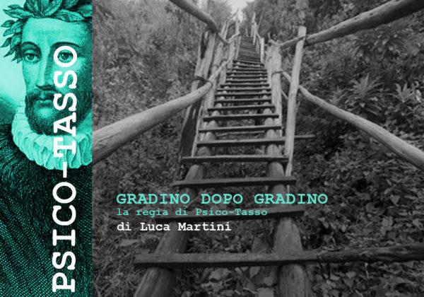 La regia di PSICO-TASSO a cura di Luca Martini